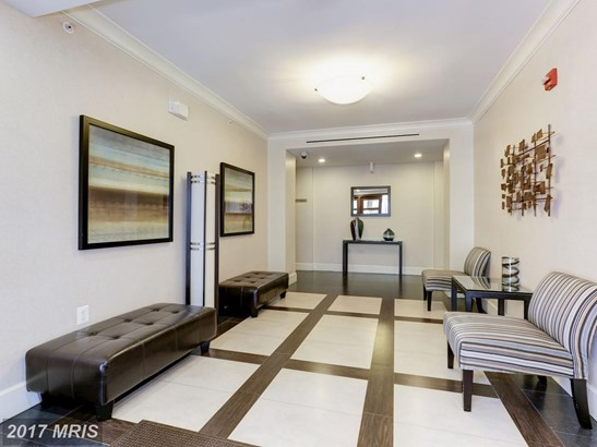 Garden 1-4 Floors, Contemporary - WASHINGTON, DC (photo 3)