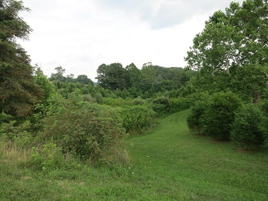 Lot, Lots/Land/Farm - Fincastle, VA (photo 1)