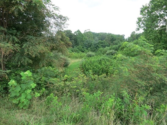 Lot, Lots/Land/Farm - Fincastle, VA (photo 2)