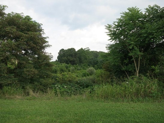 Lot, Lots/Land/Farm - Fincastle, VA (photo 3)