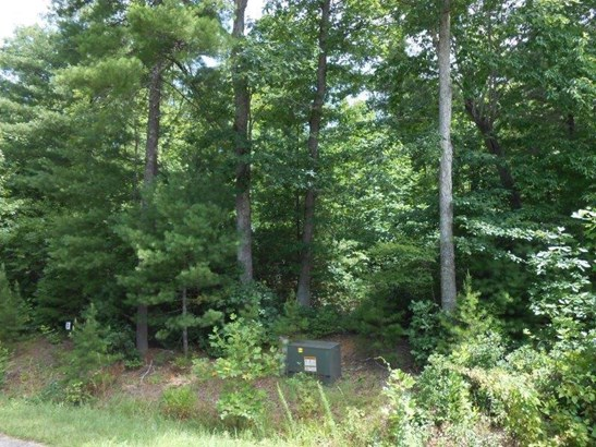 Lot, Lots/Land/Farm - Callaway, VA (photo 1)