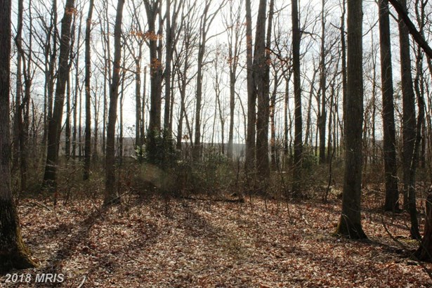 Lot-Land - MIDDLE RIVER, MD (photo 3)