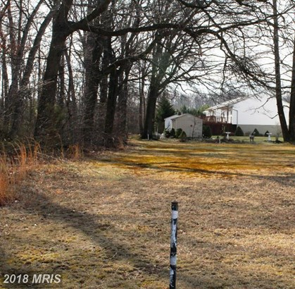 Lot-Land - MIDDLE RIVER, MD (photo 4)