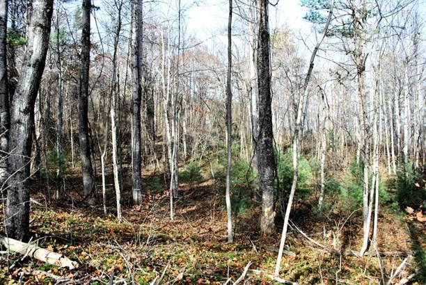Land (Acreage), Lots/Land/Farm - Floyd, VA (photo 4)