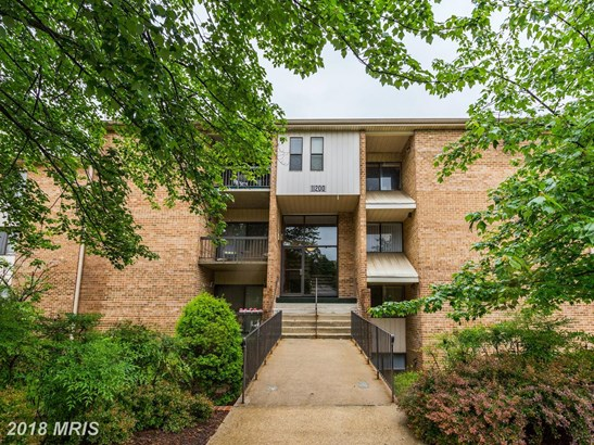 Garden 1-4 Floors, Other - BELTSVILLE, MD (photo 2)