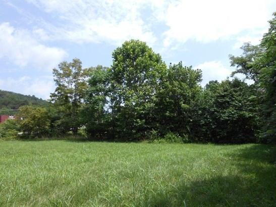 Lot, Lots/Land/Farm - Rocky Mount, VA (photo 4)