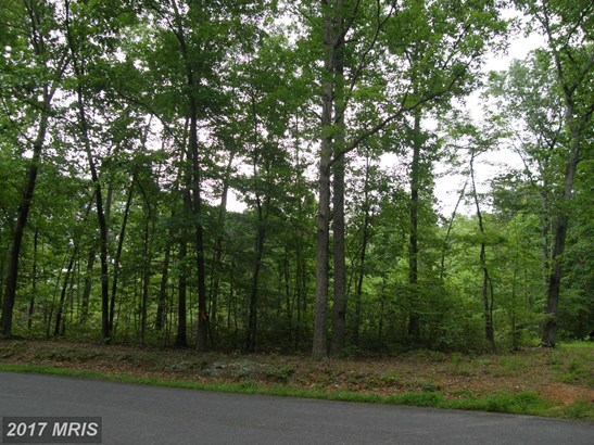 Lot-Land - BRIGHTWOOD, VA (photo 4)