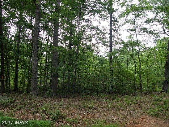 Lot-Land - BRIGHTWOOD, VA (photo 5)