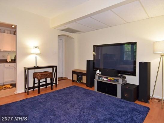 Garden 1-4 Floors, Other - ARLINGTON, VA (photo 5)