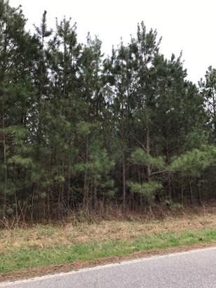 Land/Lots - South Hill, VA (photo 2)