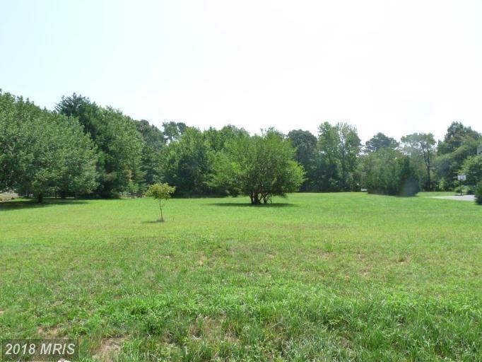 Lot-Land - GRASONVILLE, MD (photo 3)
