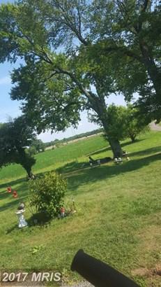 Farm House, Detached - MIDLAND, VA (photo 5)
