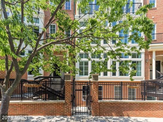 Garden 1-4 Floors, Contemporary - WASHINGTON, DC (photo 2)