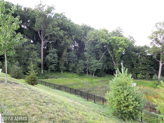 Townhouse, Contemporary - LUTHERVILLE TIMONIUM, MD (photo 4)