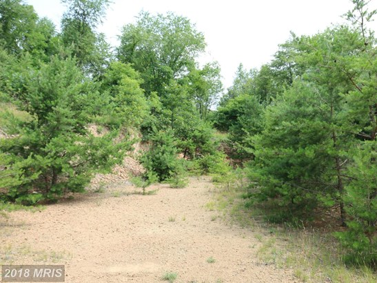 Lot-Land - HEDGESVILLE, WV (photo 3)