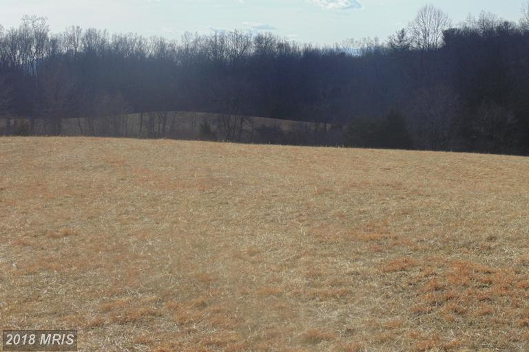 Lot-Land - AMISSVILLE, VA (photo 4)