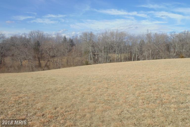 Lot-Land - AMISSVILLE, VA (photo 5)