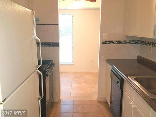 Garden 1-4 Floors, Other - MANASSAS, VA (photo 4)