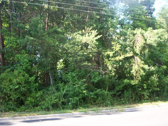 Lot, Lots/Land/Farm - Danville, VA (photo 2)