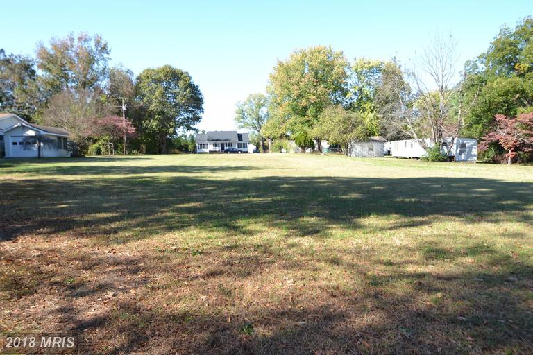 Lot-Land - PORT ROYAL, VA (photo 3)