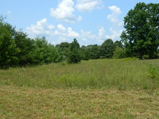 Land (Acreage), Lots/Land/Farm - Wirtz, VA (photo 1)