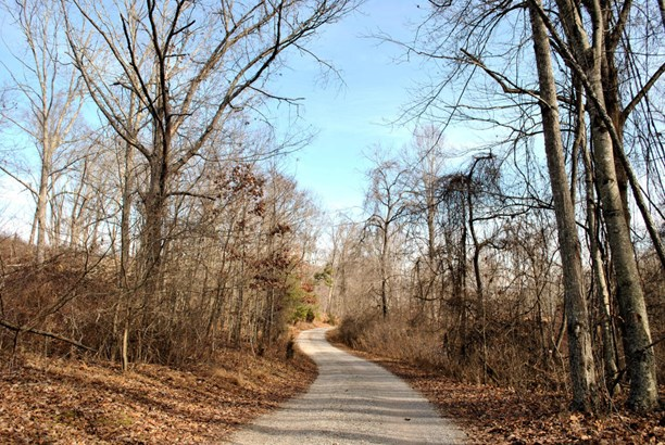 Land (Acreage), Lots/Land/Farm - Christiansburg, VA (photo 2)