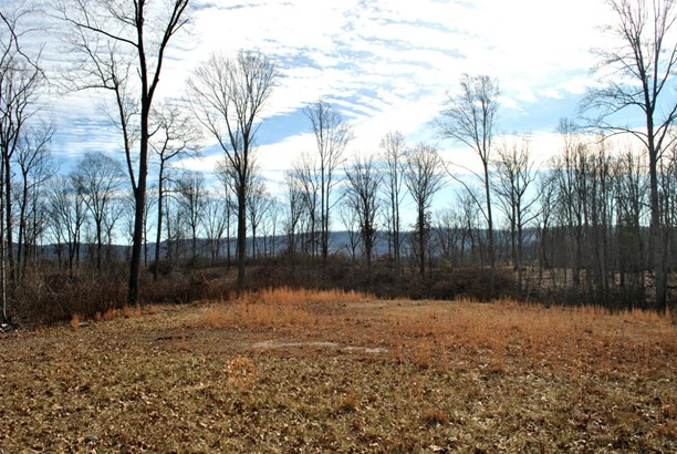 Land (Acreage), Lots/Land/Farm - Christiansburg, VA (photo 5)