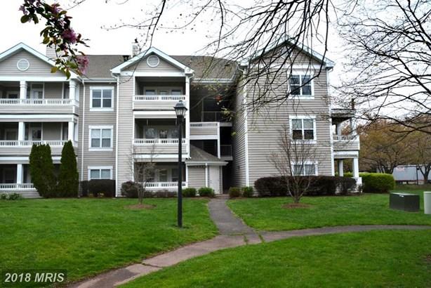 Garden 1-4 Floors, Other - CENTREVILLE, VA (photo 1)