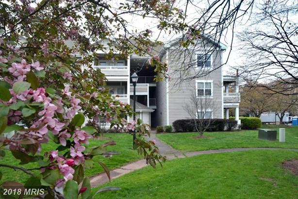Garden 1-4 Floors, Other - CENTREVILLE, VA (photo 2)