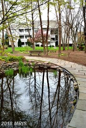 Garden 1-4 Floors, Other - CENTREVILLE, VA (photo 4)