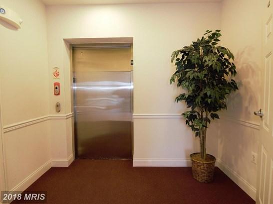 Garden 1-4 Floors, Contemporary - ABERDEEN, MD (photo 4)