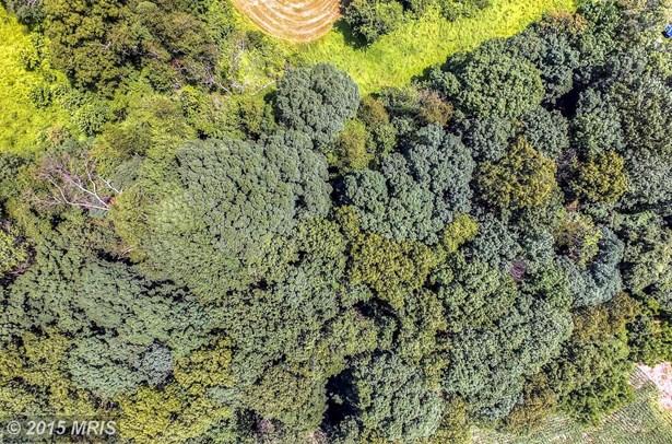 Lot-Land - SPARKS GLENCOE, MD (photo 5)