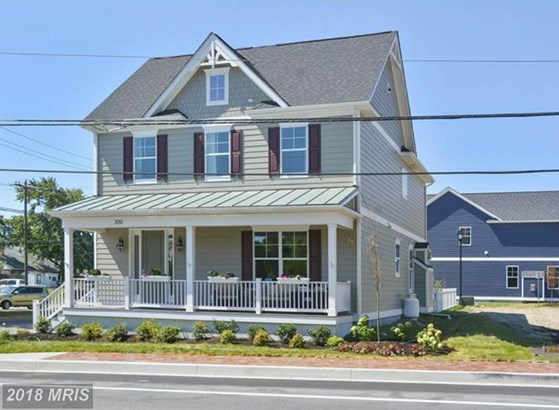Traditional, Detached - SAINT MICHAELS, MD (photo 1)