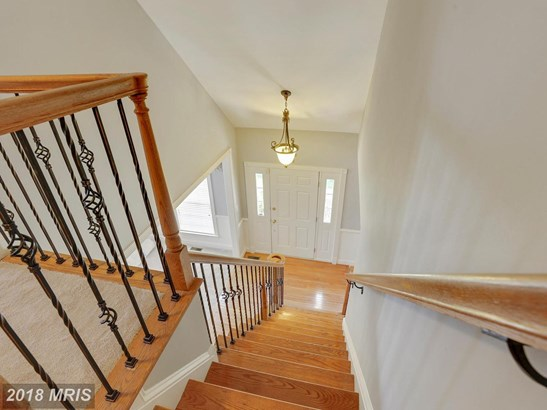 Townhouse, Carriage House - CHANTILLY, VA (photo 3)