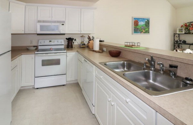 Multi-Family, Duplex - Chincoteague, VA (photo 5)