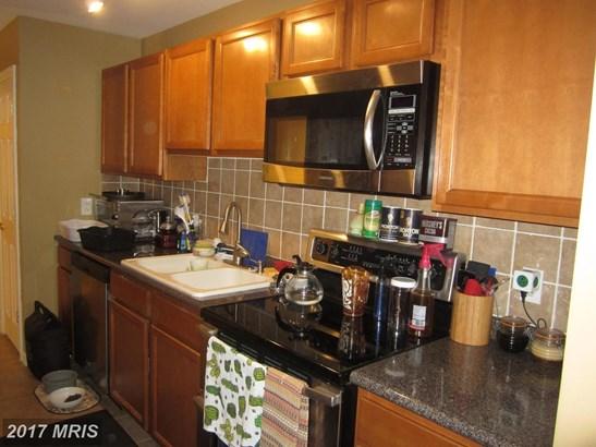 Garden 1-4 Floors, Other - GREENSBORO, MD (photo 5)