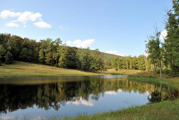 Land (Acreage), Lots/Land/Farm - Elliston, VA (photo 1)