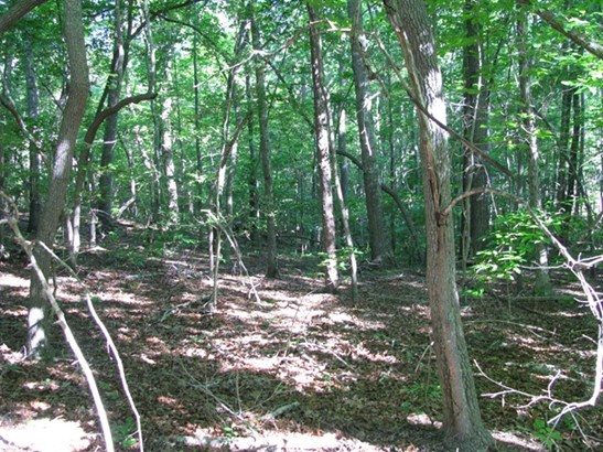 Residential, Lots/Land/Farm - Clarksville, VA (photo 1)