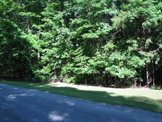Residential, Lots/Land/Farm - Clarksville, VA (photo 2)