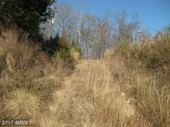 Lot-Land - LOCUST GROVE, VA (photo 2)