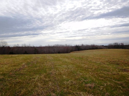 Lots/Land/Farm - Farmland, Timber, Orchard, Horse Farm, Beef Cattle (photo 1)