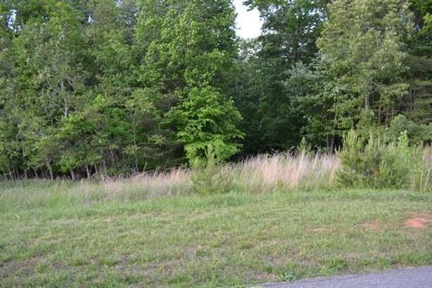 Lot, Lots/Land/Farm - Glade Hill, VA (photo 5)