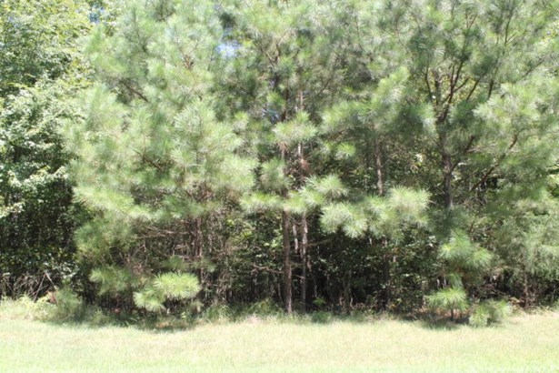 Land/Lots - Boydton, VA (photo 2)