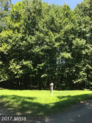 Lot-Land - BUMPASS, VA (photo 2)