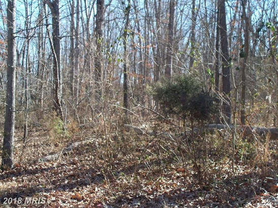 Lot-Land - REMINGTON, VA (photo 2)