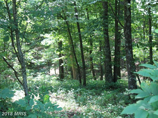 Lot-Land - GERRARDSTOWN, WV (photo 2)