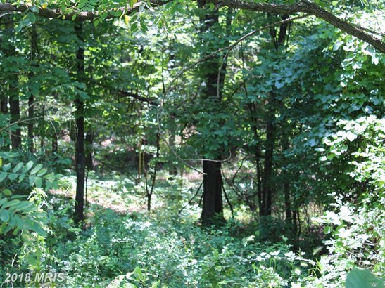 Lot-Land - GERRARDSTOWN, WV (photo 3)