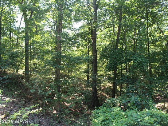 Lot-Land - GERRARDSTOWN, WV (photo 4)