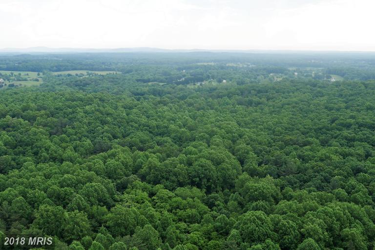 Lot-Land - AMISSVILLE, VA (photo 3)