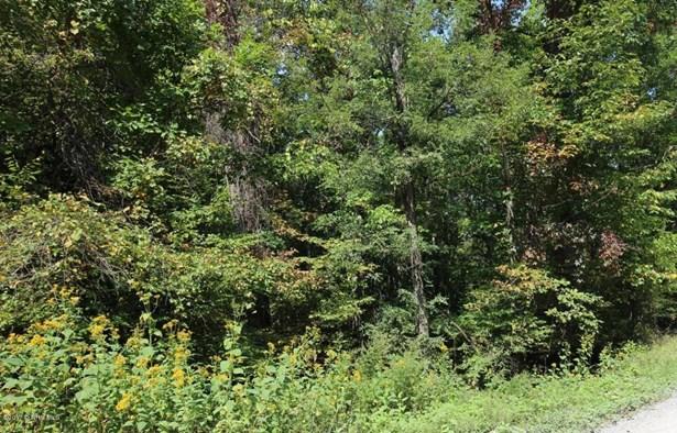 Land - Narrows, VA (photo 2)